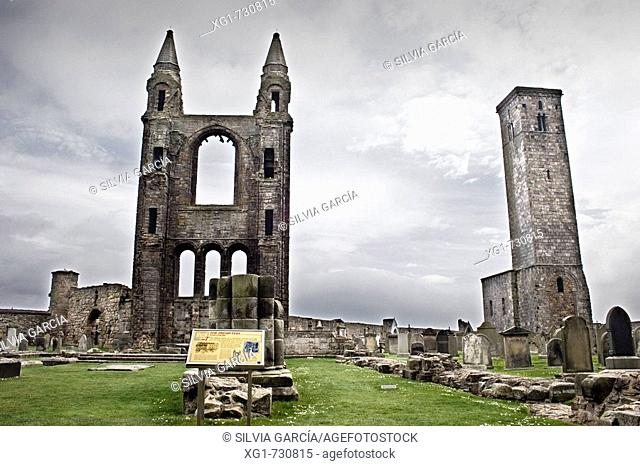 Ruins of St. Rule's church and cathedral, St. Andrews. Fife, Scotland, UK