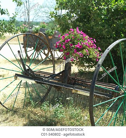 Ancient horse cart with flowers. Vaucluse. Provence. France