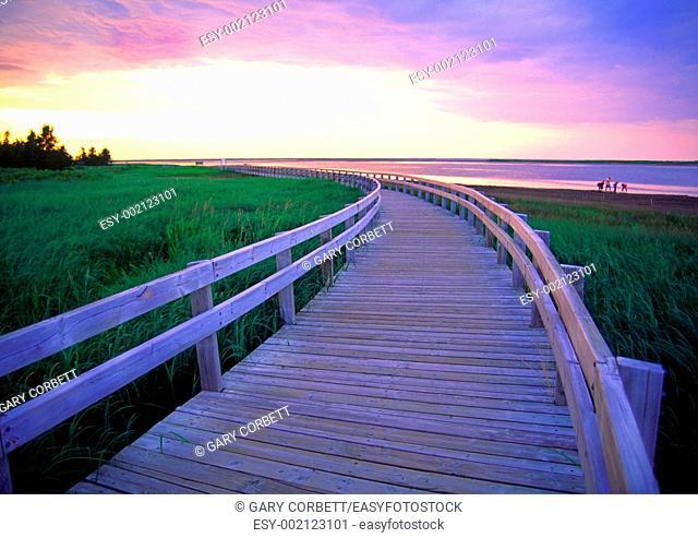 a boardwalk at Kelly's Beach Kouchibouguac National Park New Brunswick Canada
