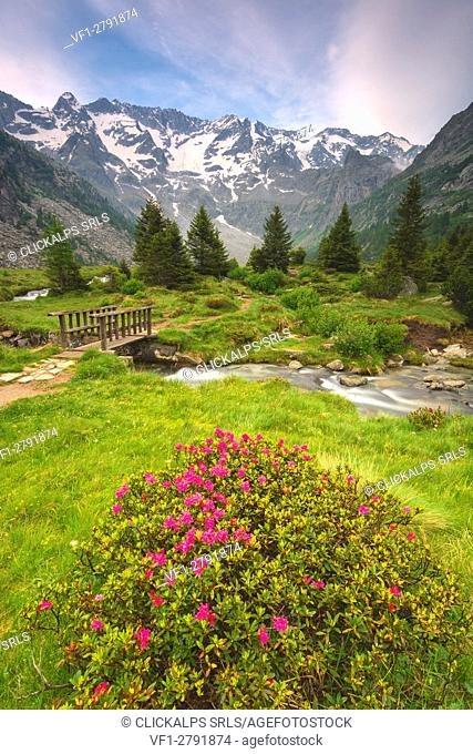 Europe, Italy, Adamello park in province of Brescia