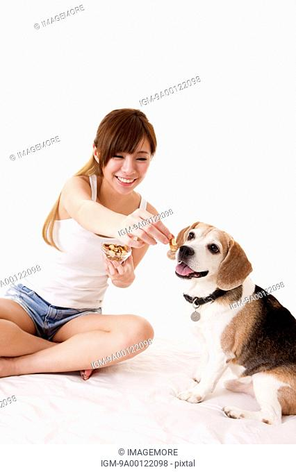 Young woman feeding dog with smile