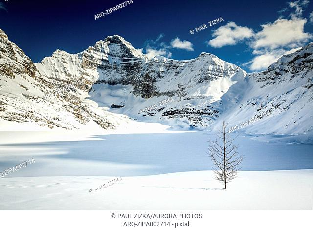 Majestic natural scenery with snow covered mountains and Lake O'Hara in winter, Yoho National Park, Alberta, Canada