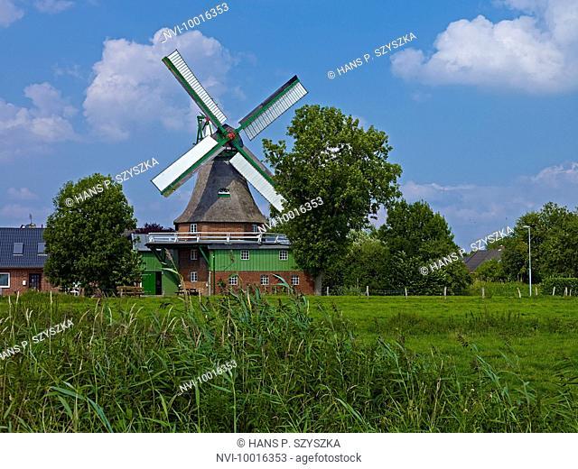 Windmill Gott mit uns in Eddelak, Dithmarschen District, Schleswig-Holstein, Germany