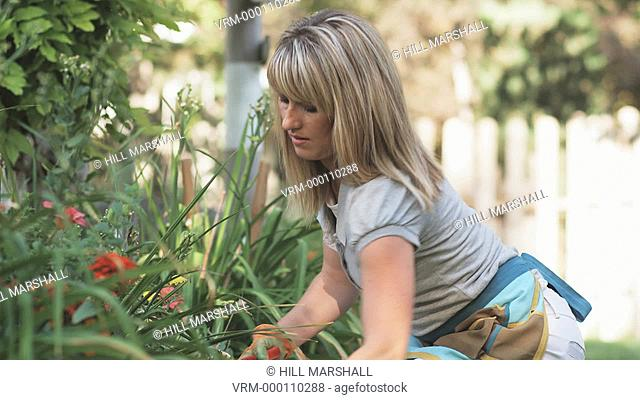 two women gardening