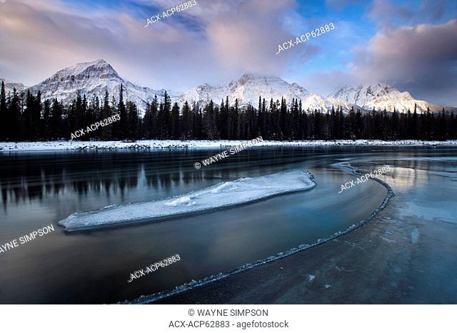 Sunrise at Athabasca River with ice flow and Mount Fryatt in Jasper National Park, Alberta, Canada