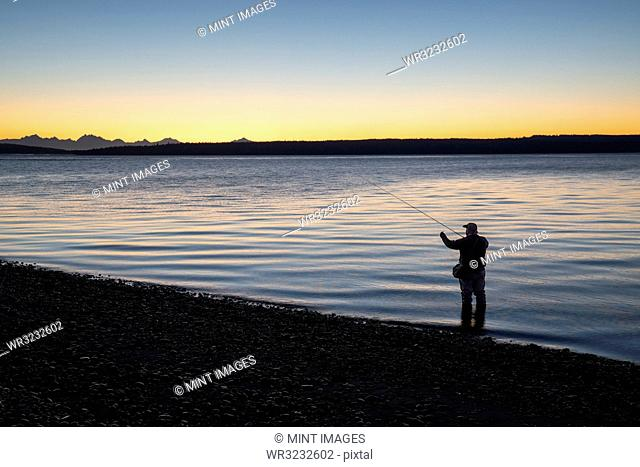 A fly fisherman gets ready to wade into salt water at sunrise and fly fish for coastal cutthroat trout and salmon at a beach on the north west coastline of the...