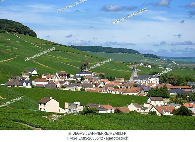 France, Marne, Oger, Cote des Blancs, village in the middle of vineyards of Champagne classified Grand Cru