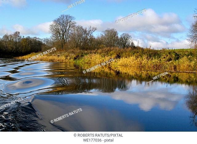 View on autumn landscape of river and trees in sunny day. Forest and grass on river coast in autumn day. Reflection of autumn trees and sky in water