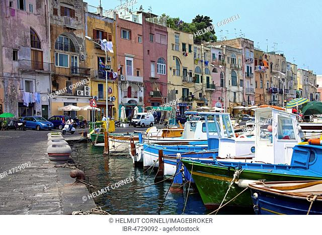 Fishing boats in front of colourful houses in the harbour Marina Grande, Procida, Gulf of Naples, Campania, Italy