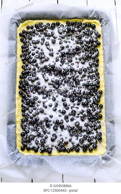 Blueberry cake (unbaked)