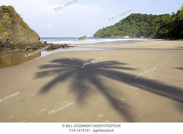 Shadow of palm tree in sand on Quepos Beach - Quepos, Costa Rica
