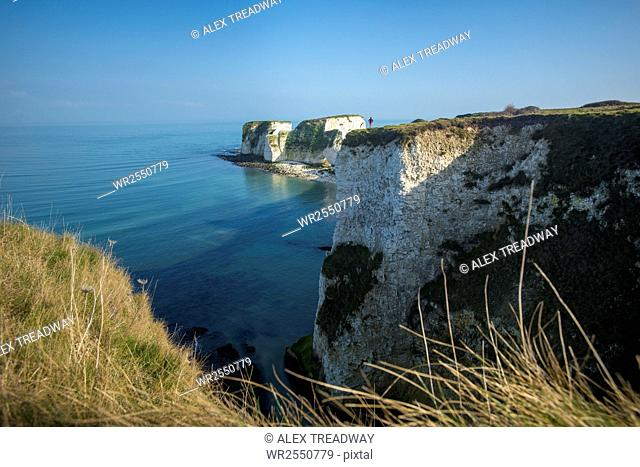 A woman looks out at Old Harry Rocks at Studland Bay in Dorset on the Jurassic Coast, UNESCO World Heritage Site, Dorset, England, United Kingdom, Europe