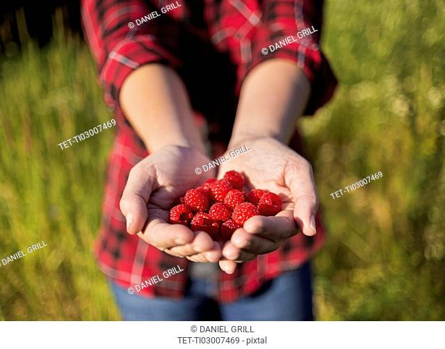 Mid section of woman holding raspberries in hands