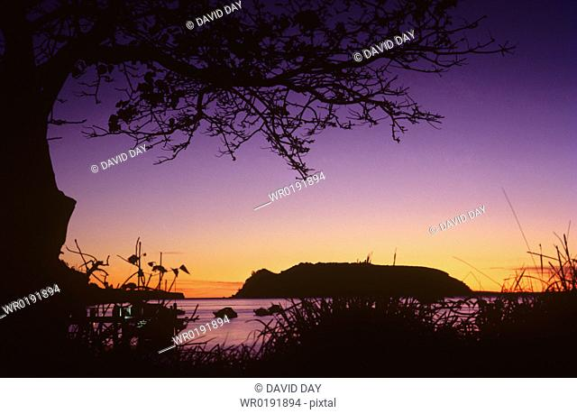 Dawn glow over Lion Island in Pittwater Lion Island, Pittwater, New South Wales, Australia