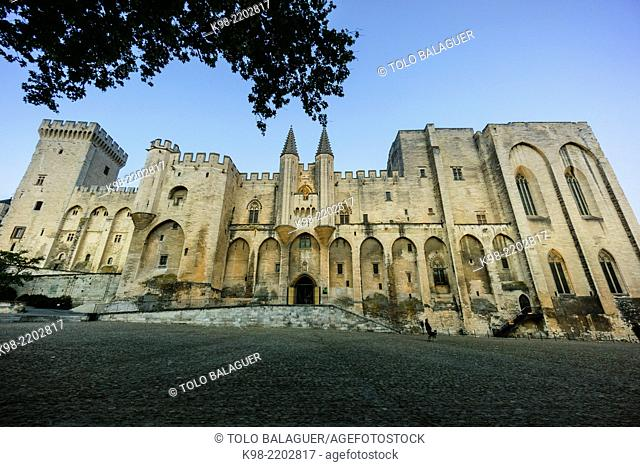 Palais des Papes (Papal palace), Avignon, France
