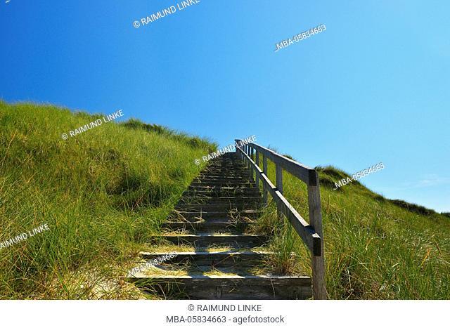 Wooden Stairway through Dunes, Summer, Norddorf, Amrum, Schleswig-Holstein, Germany