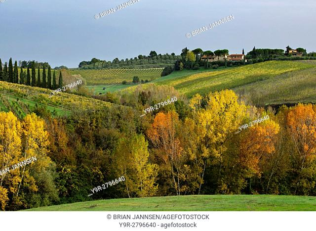 Autumn colors and countryside near San Gimignano, Tuscany, Italy