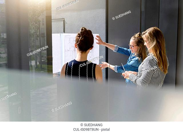 Colleagues discussing plans on glass wall