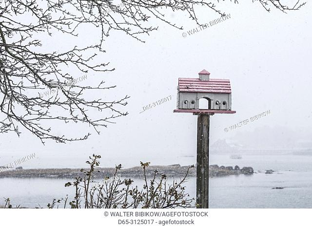 USA, New England, Cape Ann, Massachusetts, Annisquam, winter, birdhouse