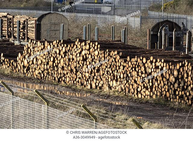 Timber Distrubution by Railway