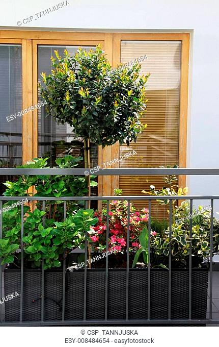 Beautiful terrace with a lot of flowers