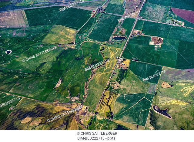 Aerial view of green farmland plots, Cedarville, California, United States