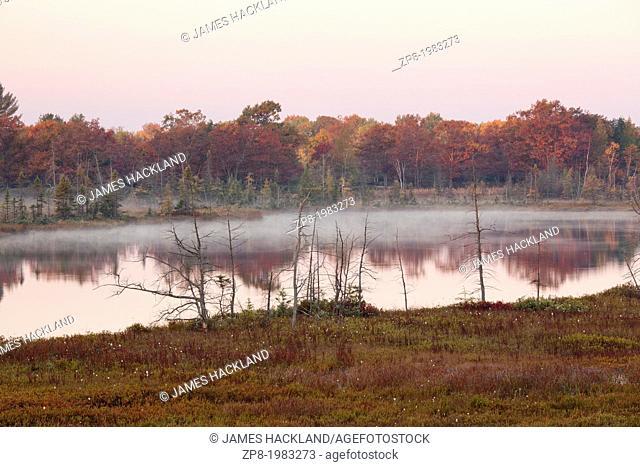Autumn colour at autumn. Muskoka, Ontario, Canada