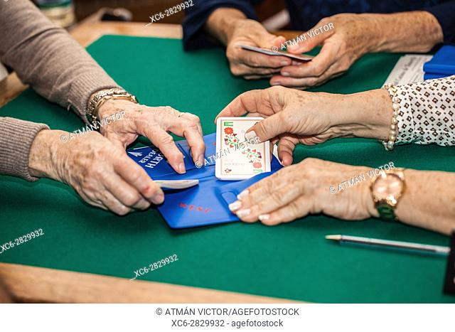 old people playing bridge game