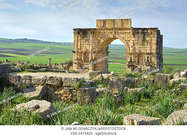 Roman ruins of Volubilis near Meknes, UNESCO, Morocco, Africa