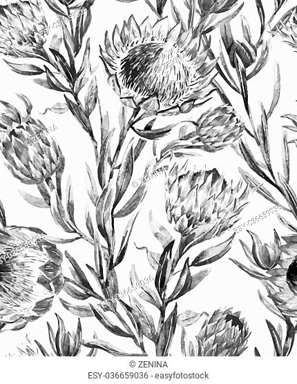 Beautiful vector pattern with nice watercolor tropical protea flower