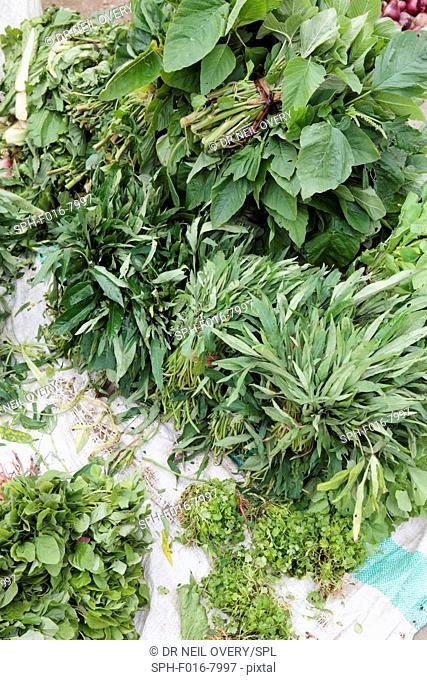 Mixed green vegetables and herbs for sale in market, Stone Town, Zanzibar, Tanzania