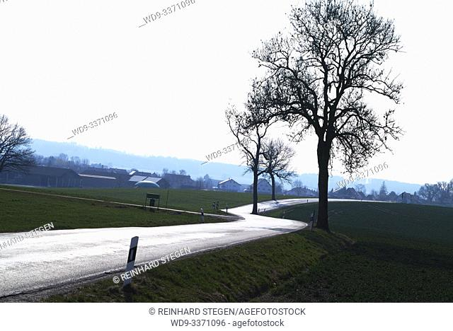 road bends, silvery shimmering road, winding, near Landsberg/ Lech, Bavaria, Germany