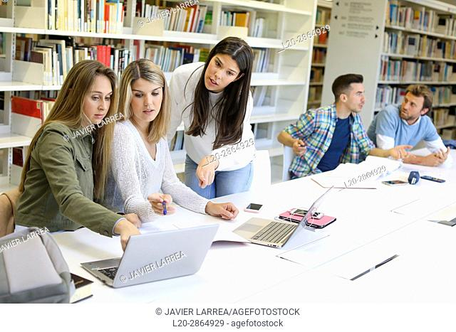 Group of students studying in library, University of the Basque Country, Donostia, Gipuzkoa, Spain