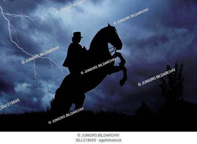 Freiberger Horse, Franches-Montagnes. Rider with costume and sidesaddle on a rearing horse, seen against a cloudy sky with thunderstorm. Switzerland