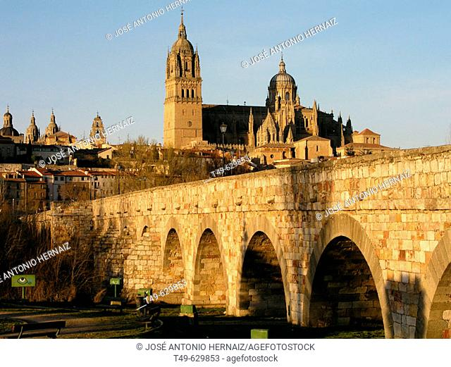 Roman bridge and old cathedral, Salamanca. Castilla-Leon, Spain