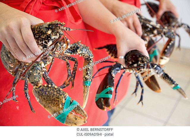 Women holding fresh lobsters