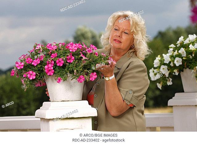 Woman watching petunia, Petunia hybride