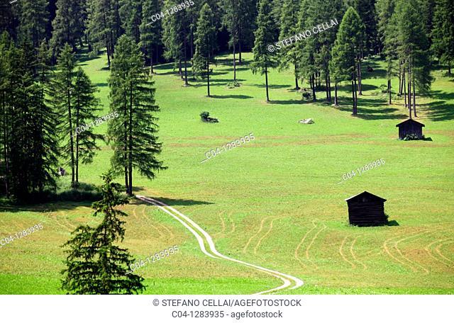 Sesto, Val Pusteria, Trentino-Alto Adige, Italy