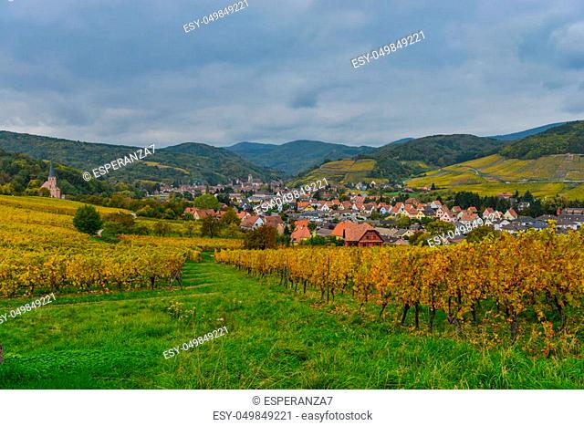 View of Andlau village and churche in wineyard, autumn, Alsace, France