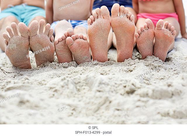 MODEL RELEASED. Family sitting on the beach, focus on bare feet