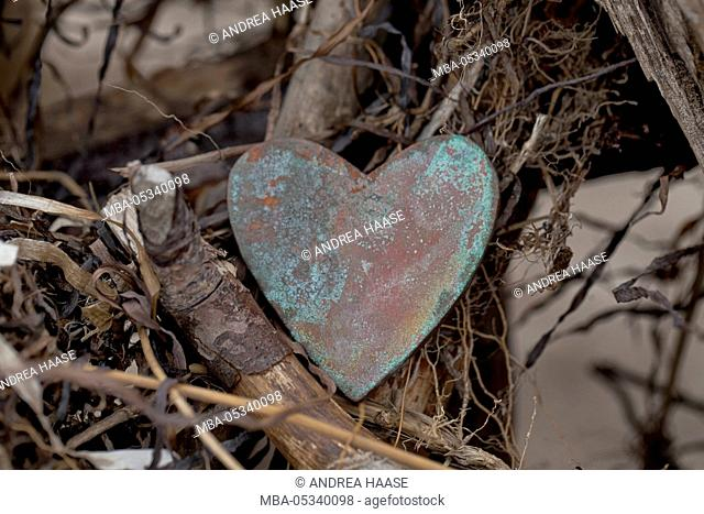 weathered heart and driftwood