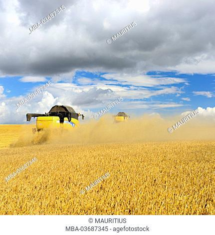 Germany, Saxony-Anhalt, Saalekreis, combine harvester, harvest
