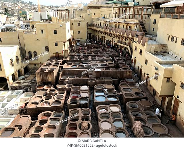 Africa, morroco traditional processing leather in fes