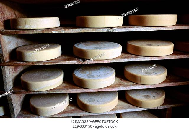 Maturing cellars for Berg Cheese. Grindelwald. Bernese Alps. Switzerland