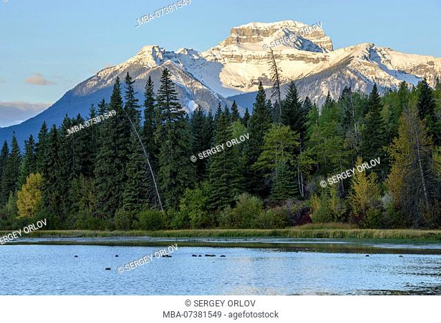 sunrise, Banff National Park, Alberta, mountain, sunlight, forest, canadian rockies