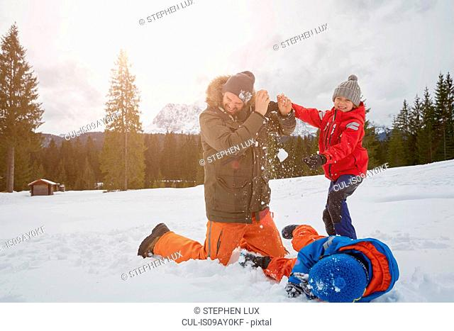 Man and sons having snowball fight in winter, Elmau, Bavaria, Germany