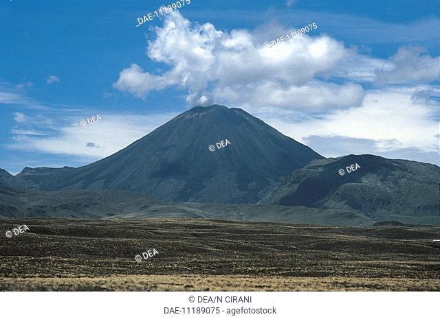 New Zealand - North Island - Mount Ngauruhoe Volcano. Volcanic plateau