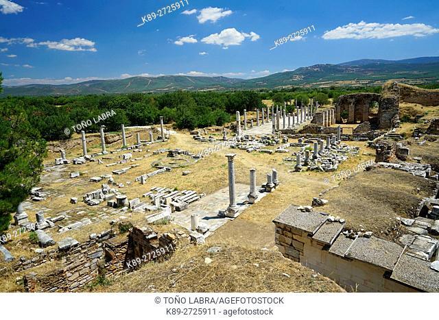 Aphrodisias Agora. Ancient Greece. Asia Minor. Turkey