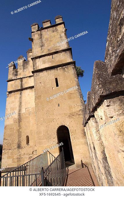 Alcazar de los Reyes Católicos, Fortress of the Kings, Córdoba, Cordoba, Andalusia, Spain, Europe