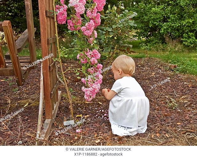 This cute Caucasian eighteen month old toddler girl is wearing a long white dress and is squatting in the backyard garden closely exploring some miniature...